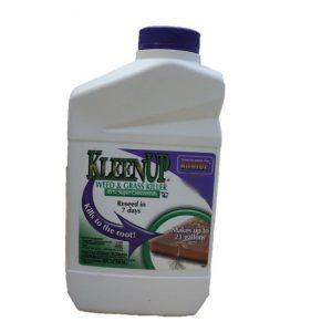 Bonide Kleenup 41% Concentrate - Quart