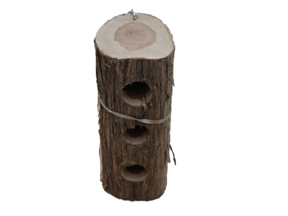 Songbird Suet Log Upside Down - 3 Plug