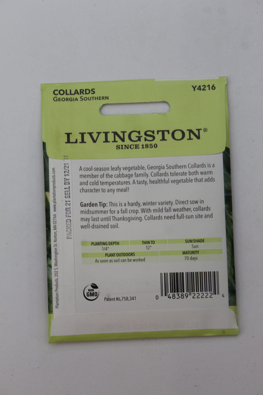 Livingston Collards Georgia Southern