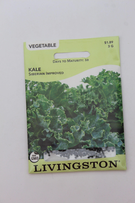 Livingston Kale Siberian Improved