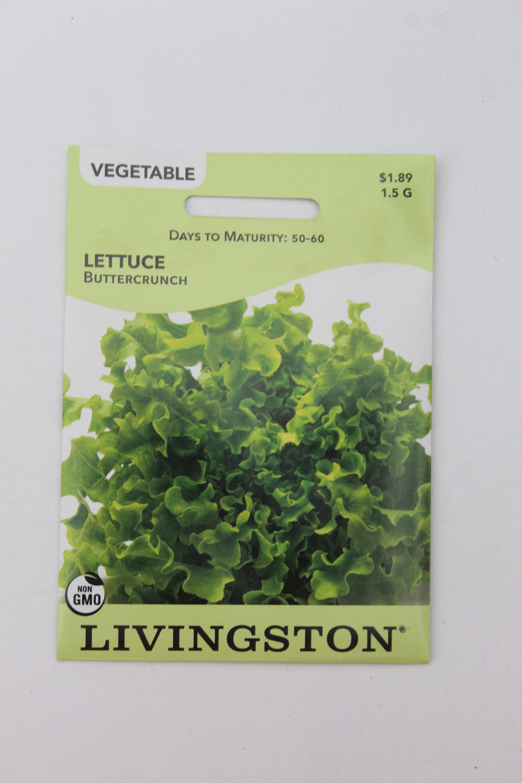 Livingston Lettuce Buttercrunch