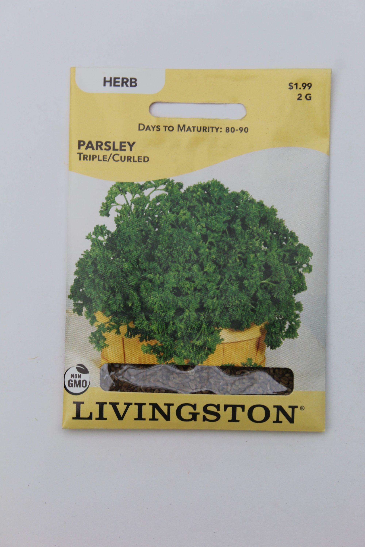 Livingston Parsley Triple Curled