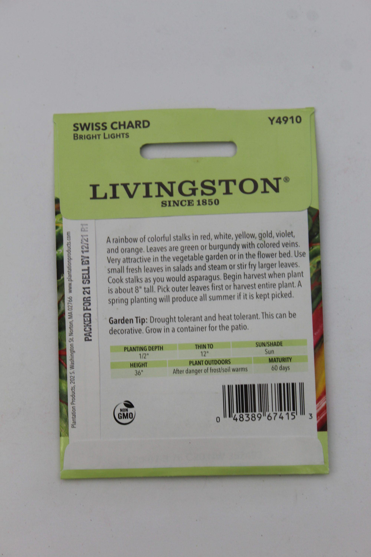 Livingston Swiss Chard Bright Lights