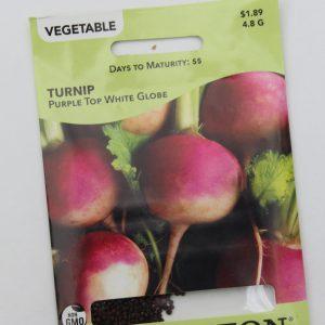 Livingston Turnip Purple Top White Globe
