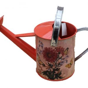 Terra Watering Can Red