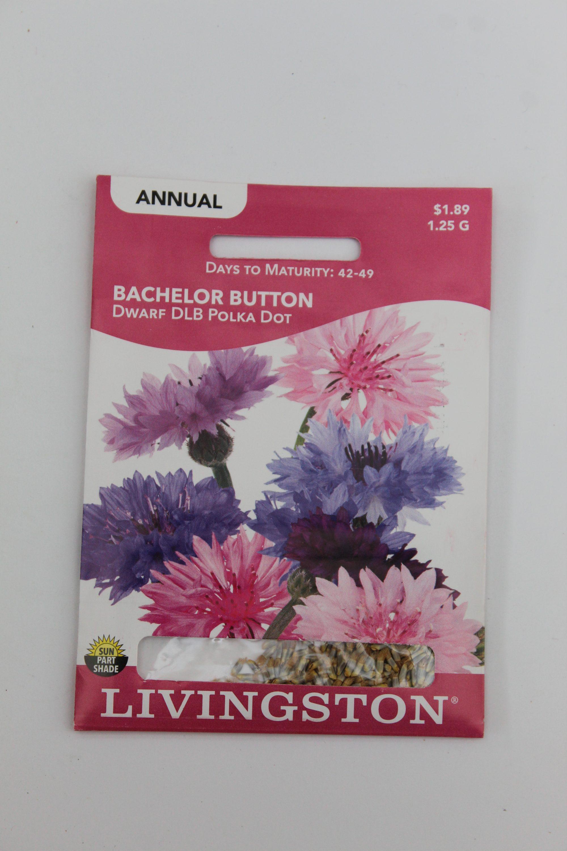 Livingston Bachelor Button Dwarf Double Polka Dot