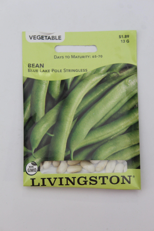 Livingston Bean Blue Lake Pole Stringless