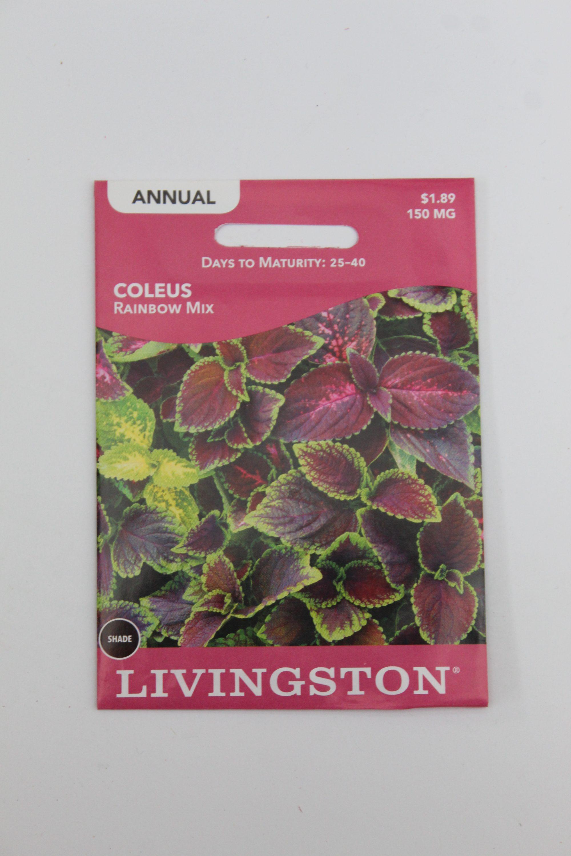 Livingston Coleus Rainbow Mix