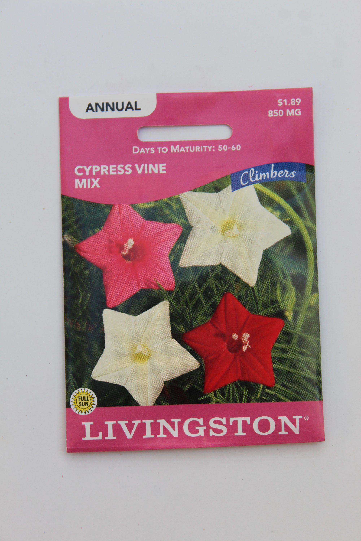 Livingston Cypress Vine Mix