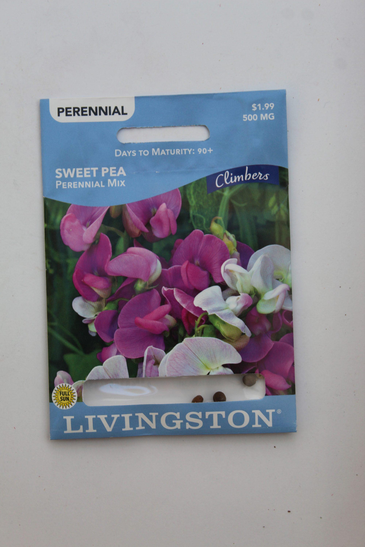 Livingston Sweet Pea Perennial Mix