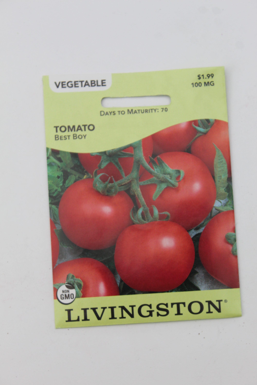 Livingston Tomato Best Boy