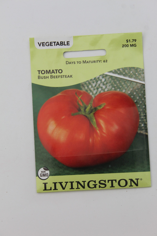 Livingston Tomato Bush Beefsteak